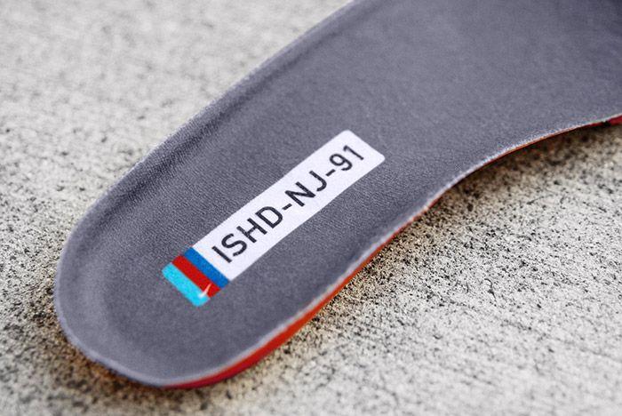 Nike Sb Dunk Low Pro Ishod Wair 2