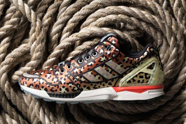 Adidas Vanguard Collection 5