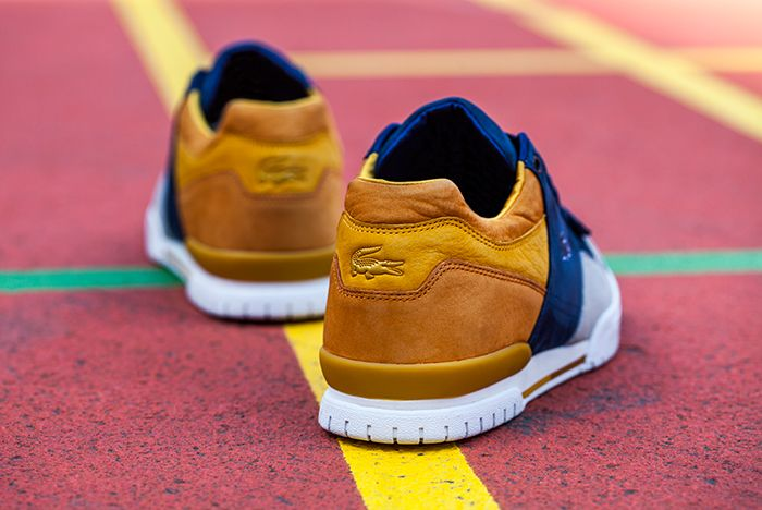 Lacoste Sf Golden 6