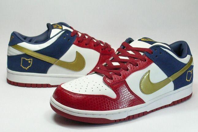 Nike Dunk Sample Lebron 2 1