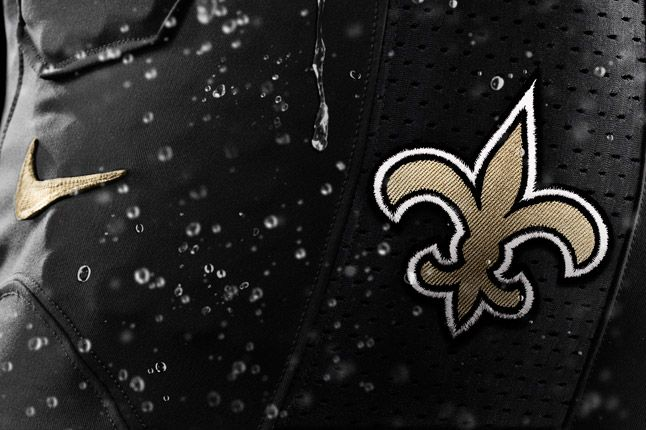 New Orleans Saints Detail 1