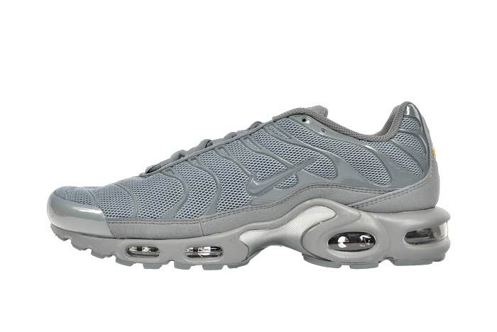 Nike Air Max Plus Hammer1