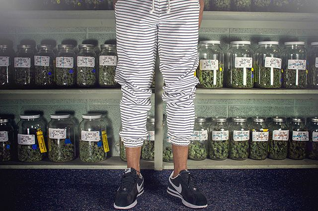 Akomplice Marijuana For The Future Collection 7