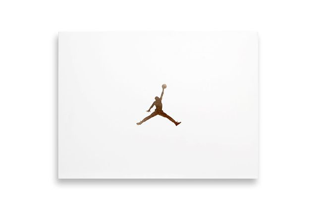 Drake X Air Jordan 10 Ovo Stingray8