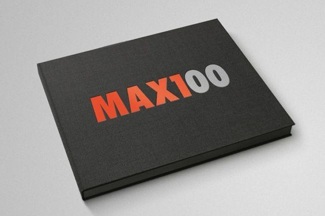 Air Max 100 Matt Stevens 4 1