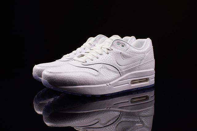 Nike Air Max 1 Wmns White Ice 2