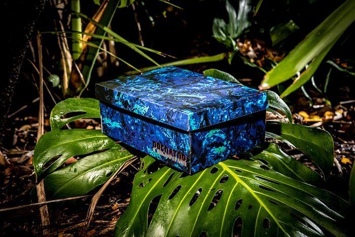Reebok Predator Pack Box