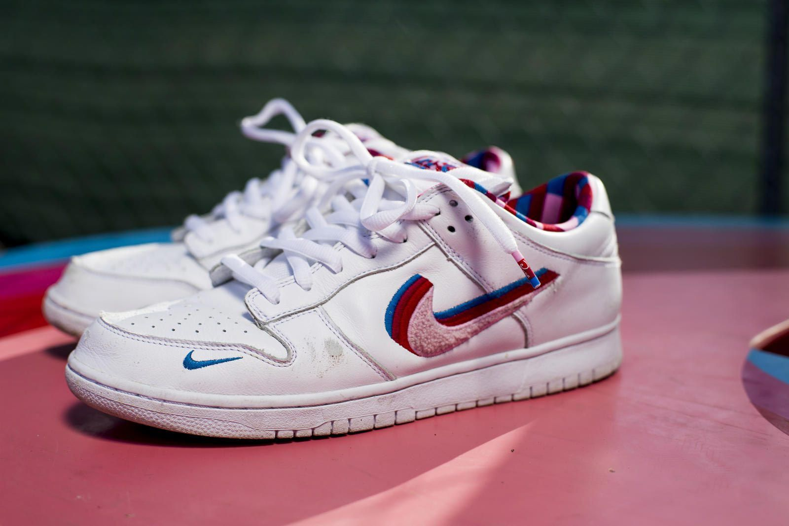 Parra Nike Sb Dunk Low Skated Pair
