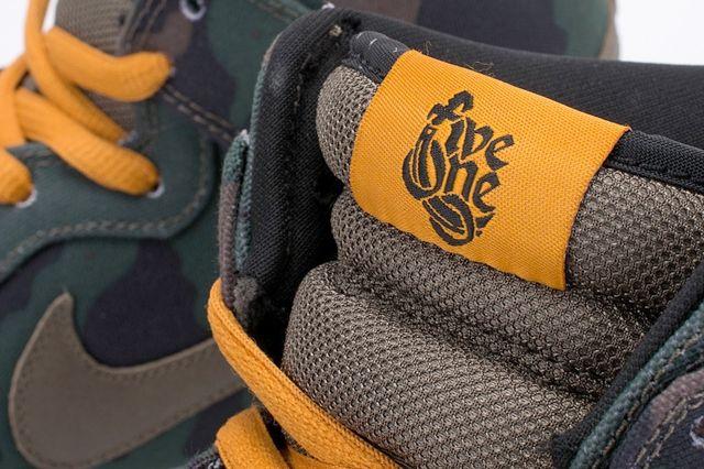 510 Nike Sb Dunk Hi Premium 3