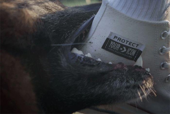 One Block Down Converse Chuck 70 White Release Date Dog