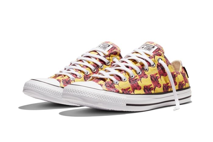 Converse Chuck Taylor All Star Andy Warhol Floral Pair 6