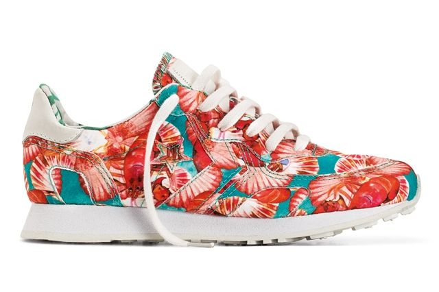 Converse Isolda Sneaker Collection Auckland Racer 1