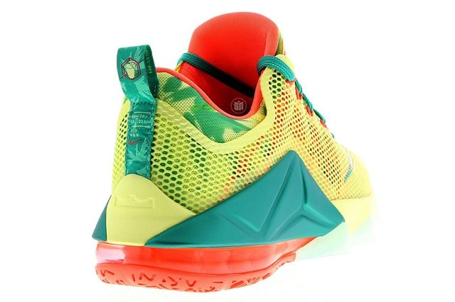 Nike Le Bron Low 2