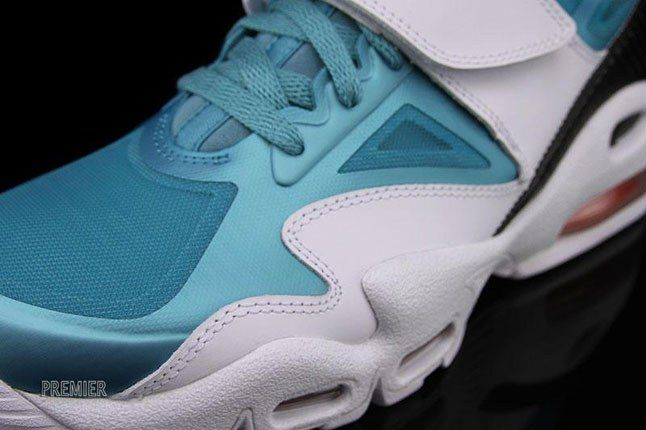 Dolphins Air Max Express 1