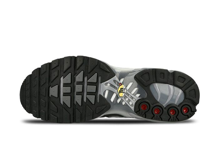 Nike Air Max Plus Black Silver 6