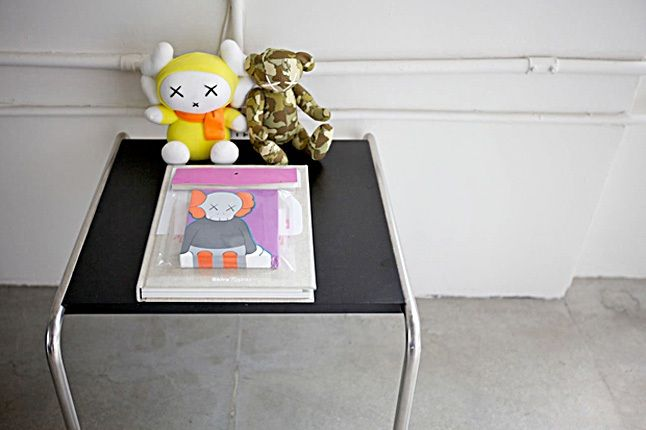 Ronnie Pirovino Kaws Collection 5 1