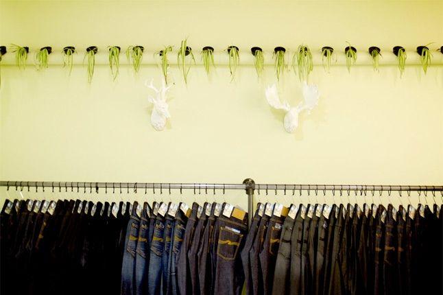 Qubic Store 7 1