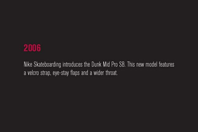 Nike Sb Dunk Pro Book 35 1