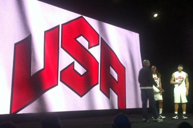 Team Usa Flyknit 1