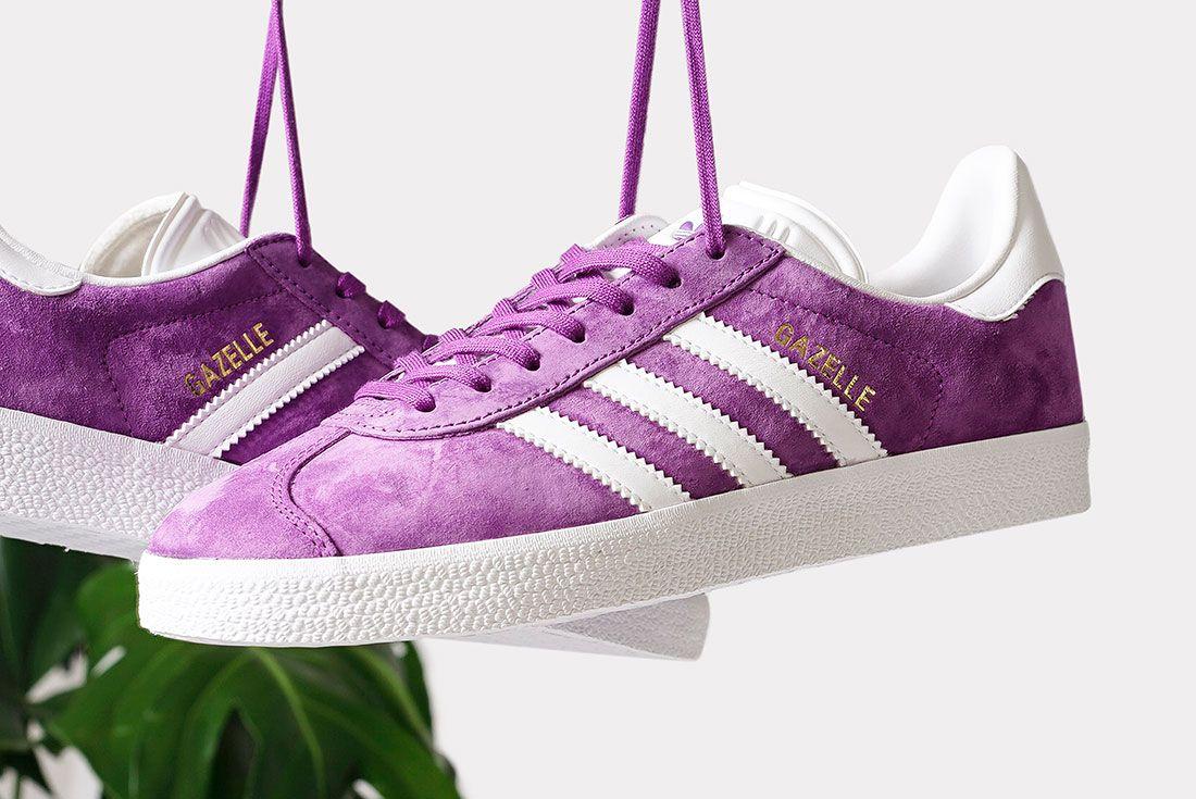 Adidas Gazelle Pack 6