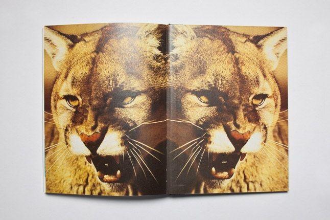 Puma Running Book Inside Back 1