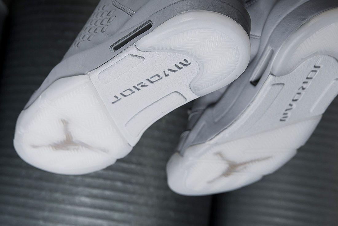 Air Jordan 5 Take Flight Pure Platinum 1