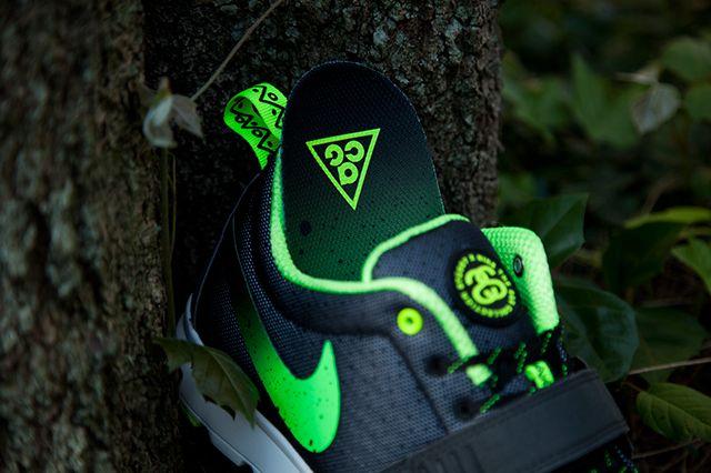 Stussy X Nike Sb Trainerendor Acg Pack 3