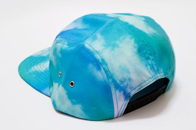 Tall Trees Clouds 5 Panel