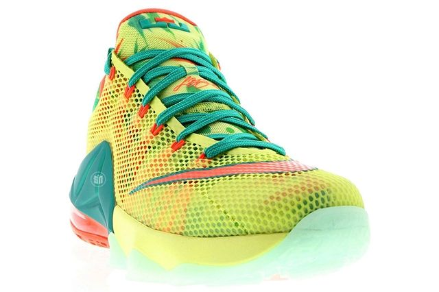 Nike Le Bron Low 5