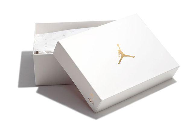 Drake X Air Jordan 10 Ovo Stingray9