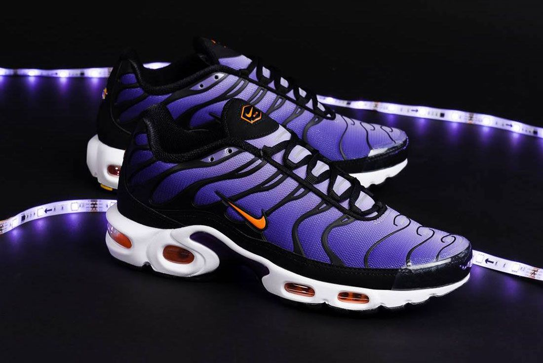 Nike Air Max Plus Court Purple Pair Side