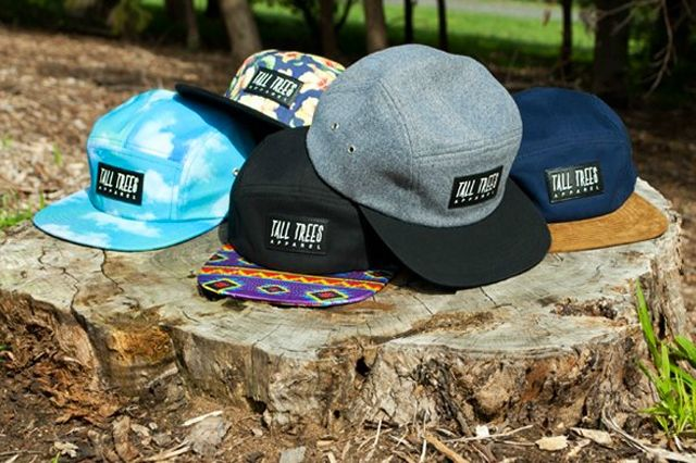 Tall Trees 5 Panel Collection