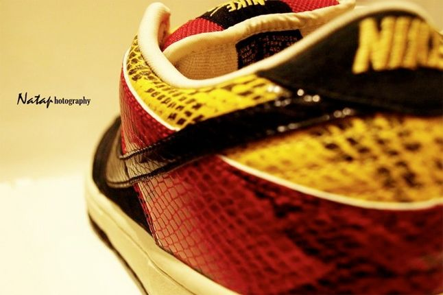 Nike Dunk Sb Snakeskin 1