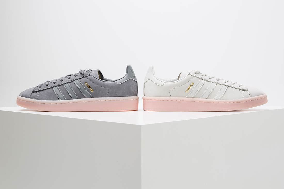 Adidas Campus Collection 13
