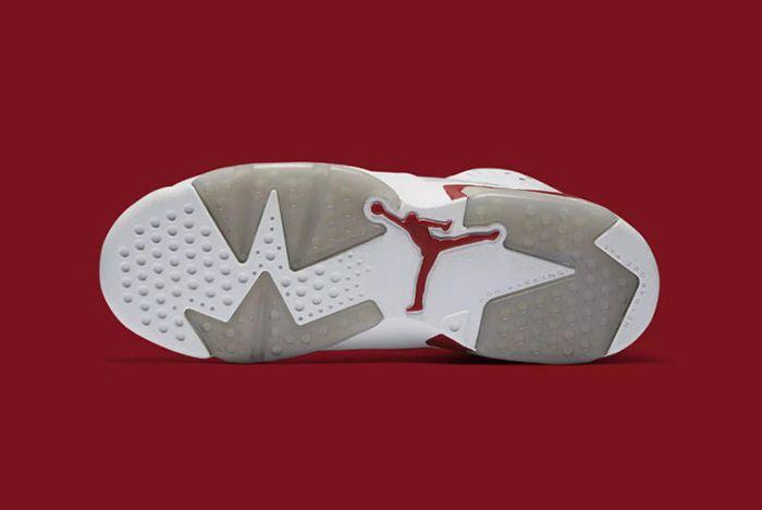 Air Jordan 6 Alternate5