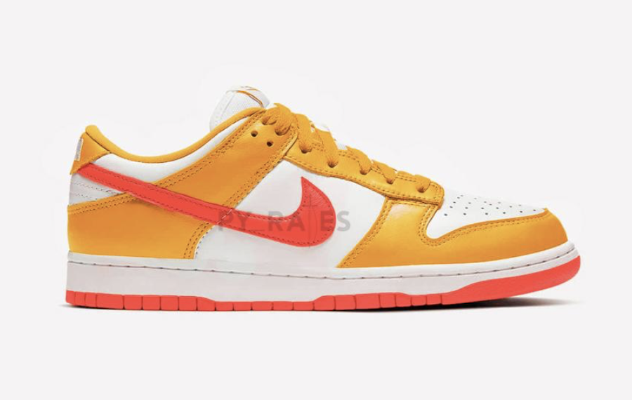 Kasina Nike Dunk Low Gold Right