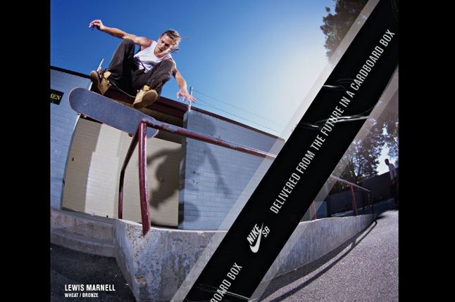 Nike Sb Dunk Pro Book 22 1
