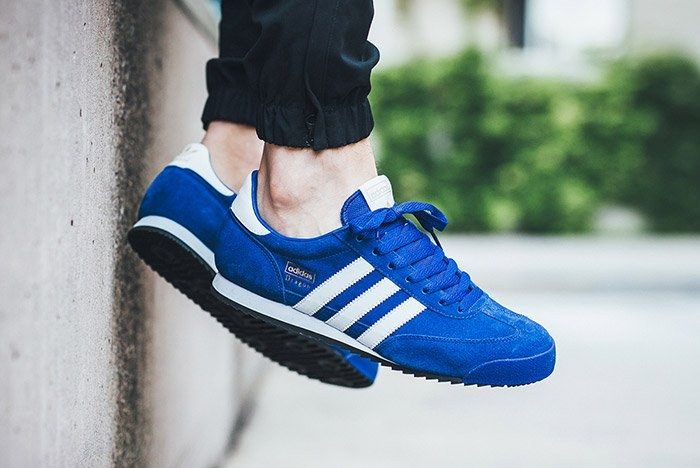 Adidas Dragon Royal Blue 2