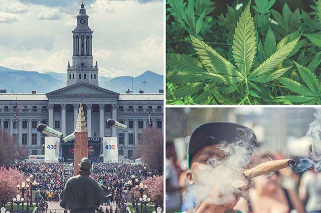 Akomplice Marijuana For The Future Collection 3
