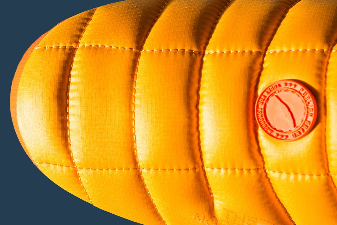 Publish Brand The North Face 7