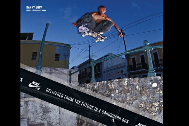 Nike Sb Dunk Pro Book 11 1
