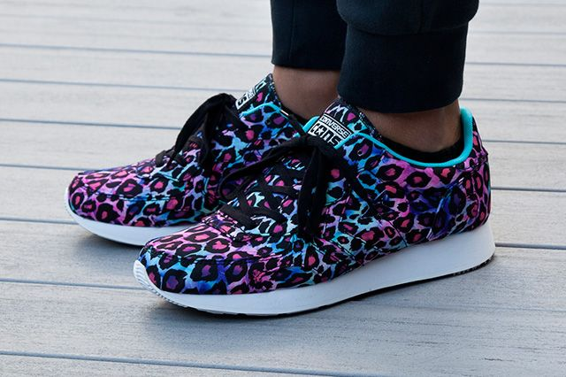 Converse Auckland Racer Animal Pack 4