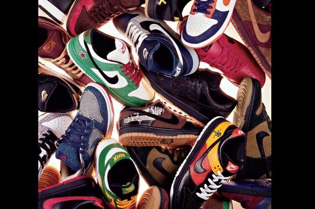 Nike Sb Dunk Pro Book 7 1