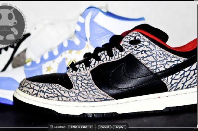 Nike Dunk Sb Low Supreme 1