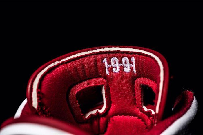 Air Jordan 6 Hare 4