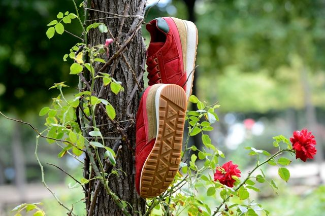 Limited Editions Le Coq Sportif 8
