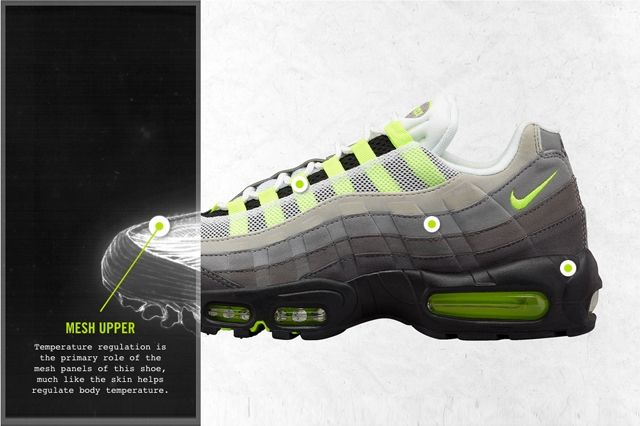 Nike Air Max 95 Anatomical 3