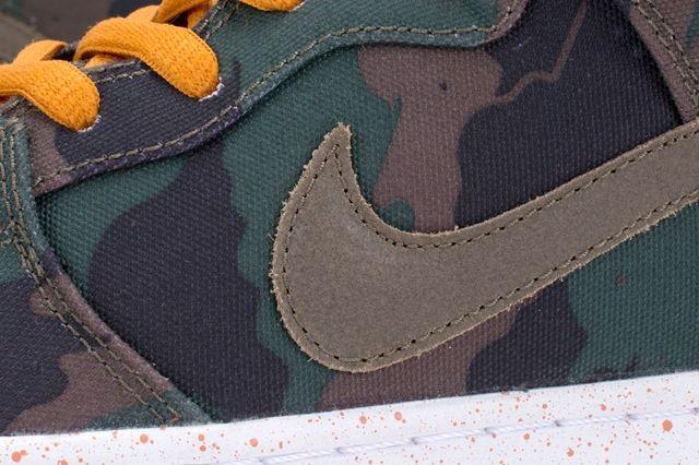 510 Nike Sb Dunk Hi Premium 1