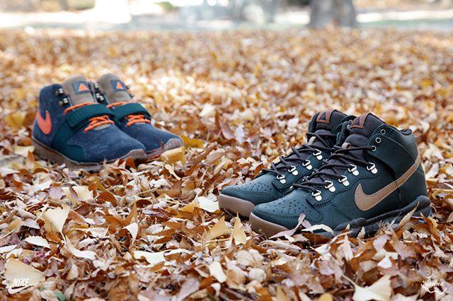 Nike Poler Trainerendor Mid Prm Dunk High Oms