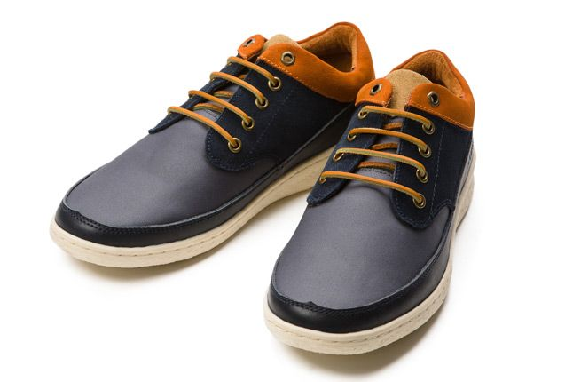 Pointer William Navy Ginger Pair Toes 1